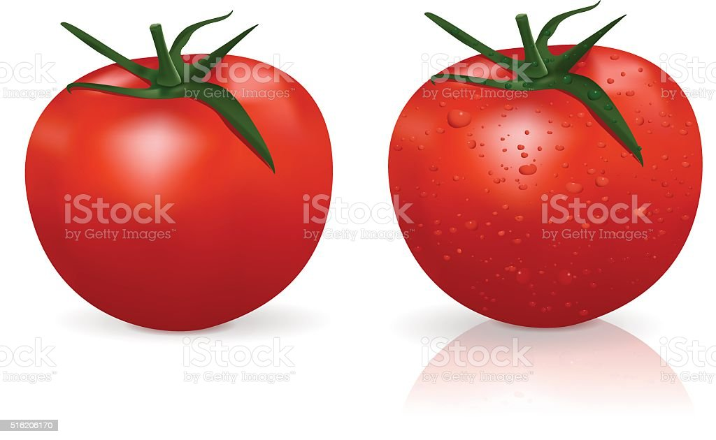Tomato and tomato with water drops vector art illustration
