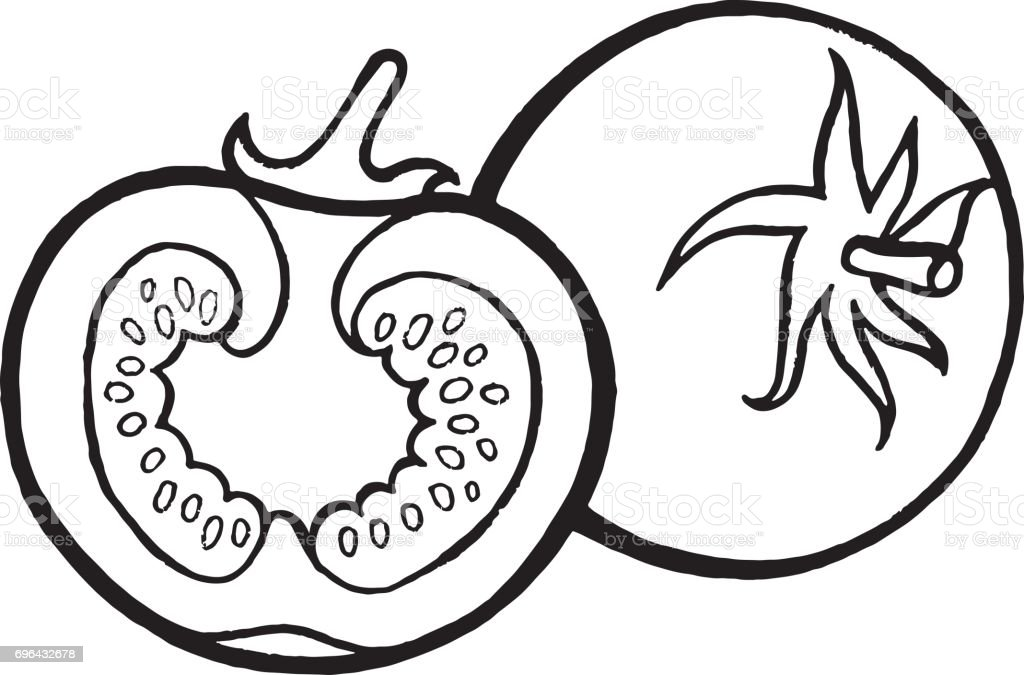 Tomate coloriage illustration dessin s la main page pour adultes et enfants vecteur de lart - Tomate dessin ...