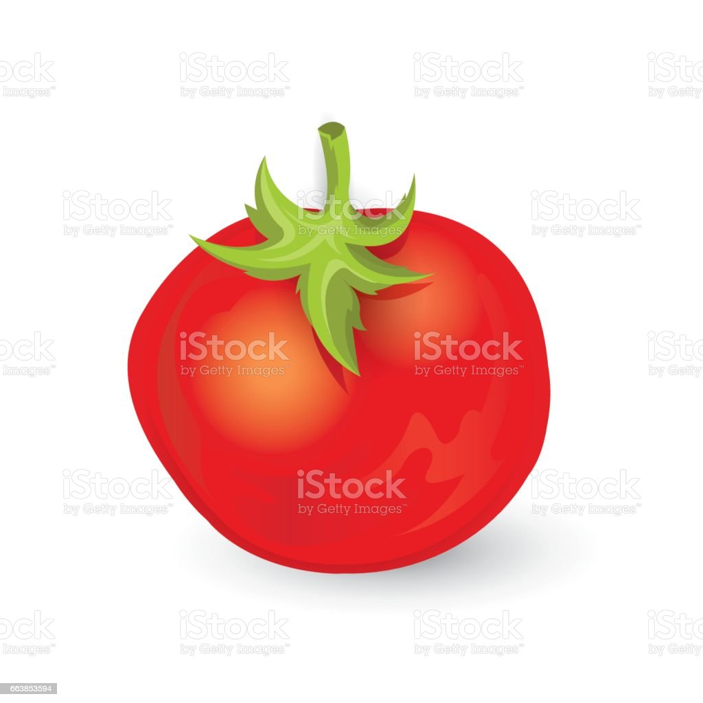tomato icon and food vector vector art illustration