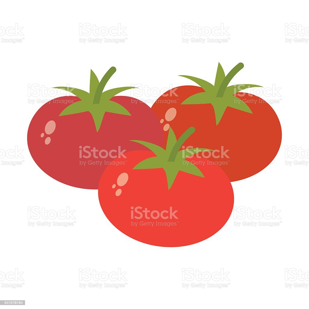 Tomato in flat style. vector art illustration