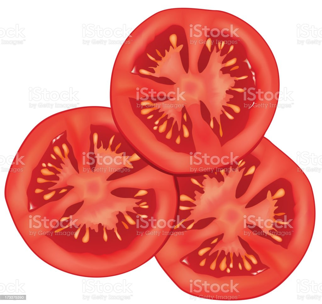 tomato isolated vector art illustration