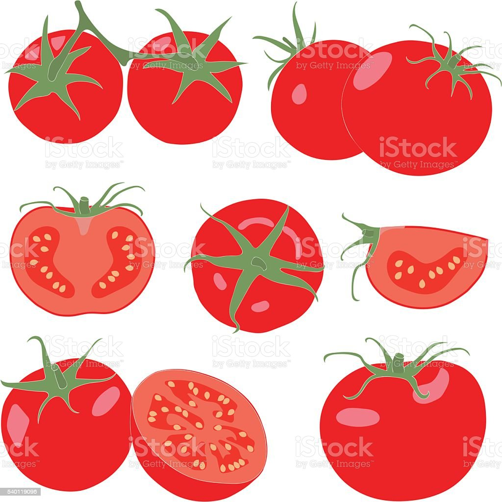 Tomato. Set tomatoes and slice. Isolated vegetables on white background vector art illustration