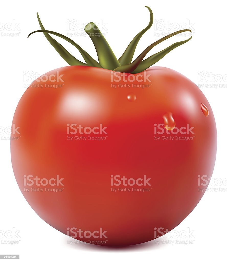 Tomato with water drops illustration vector art illustration