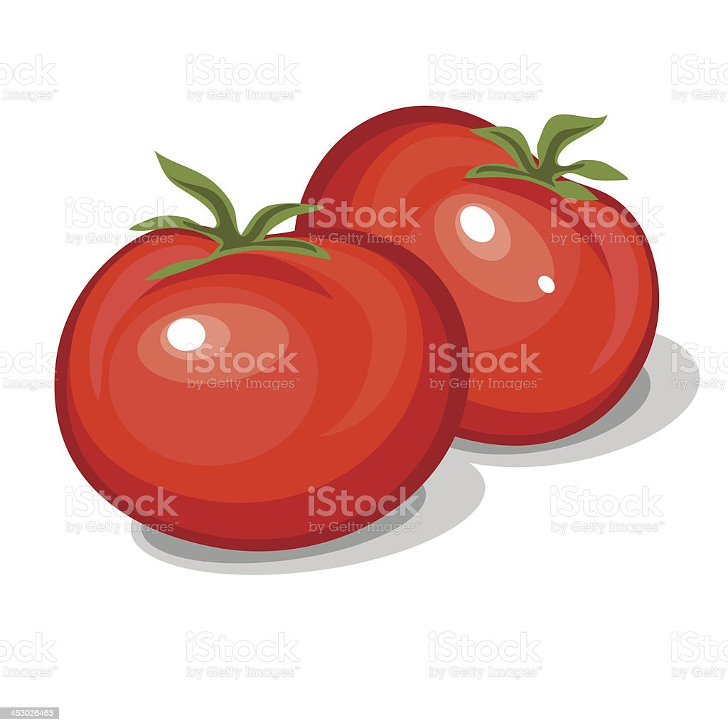 tomatoes royalty-free stock vector art