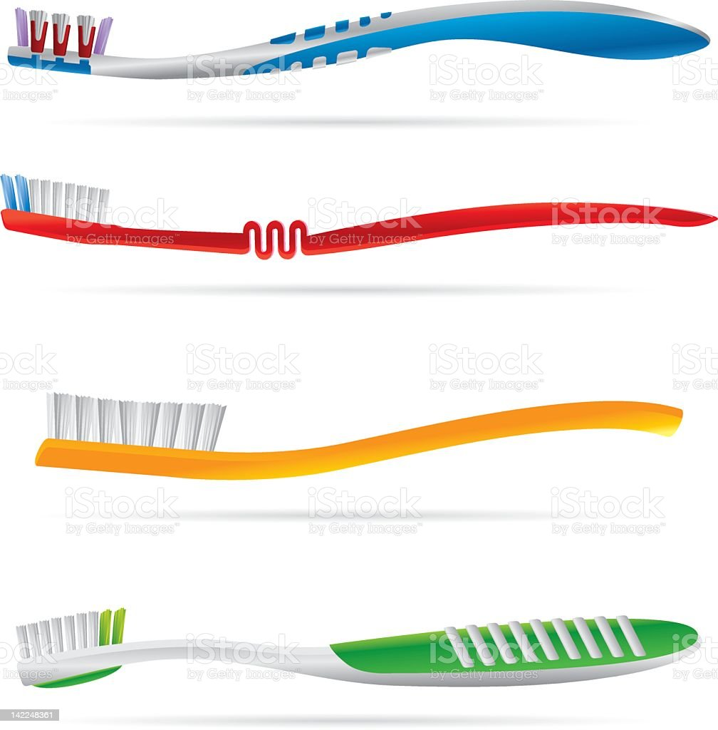 Tooth Brushes colorful vector art illustration