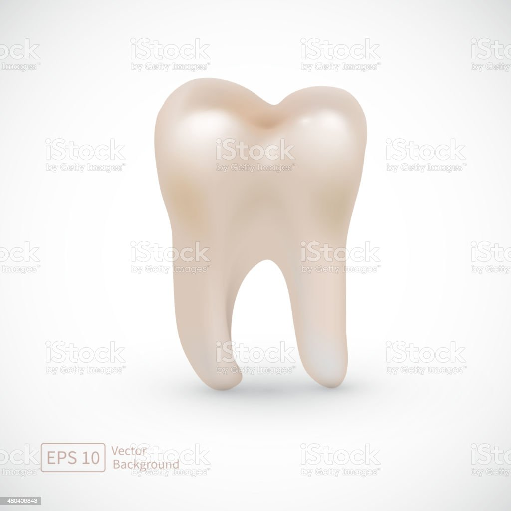 Tooth icon isolated on white background. vector art illustration