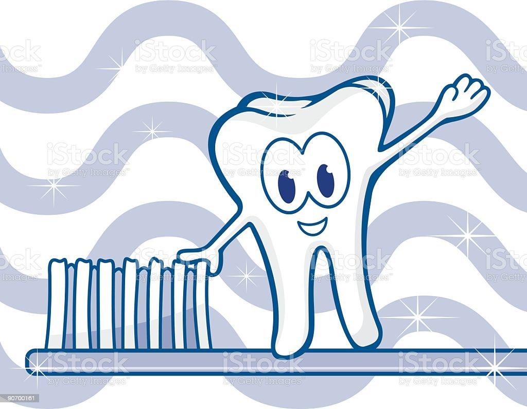 Tooth on brush vector art illustration