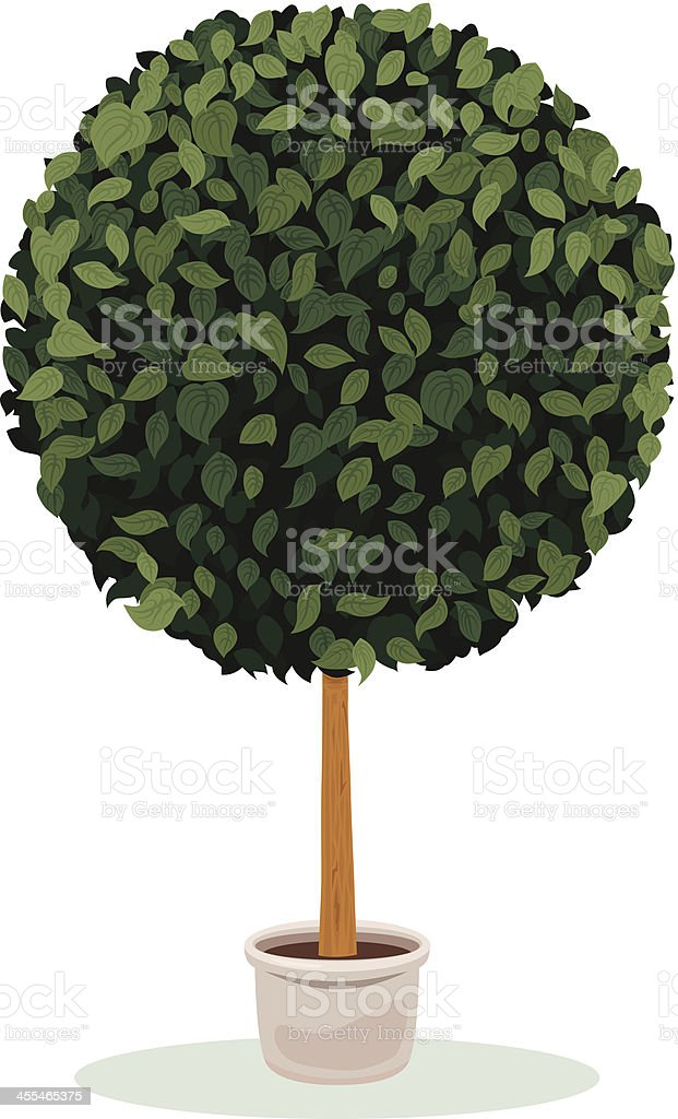 Topiary sphere plant vector art illustration
