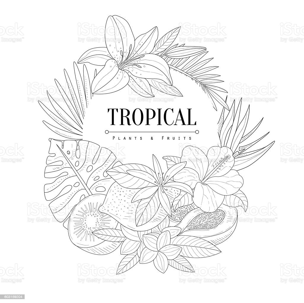 Topical Fruits And Plants Logo Hand Drawn Realistic Sketch vector art illustration
