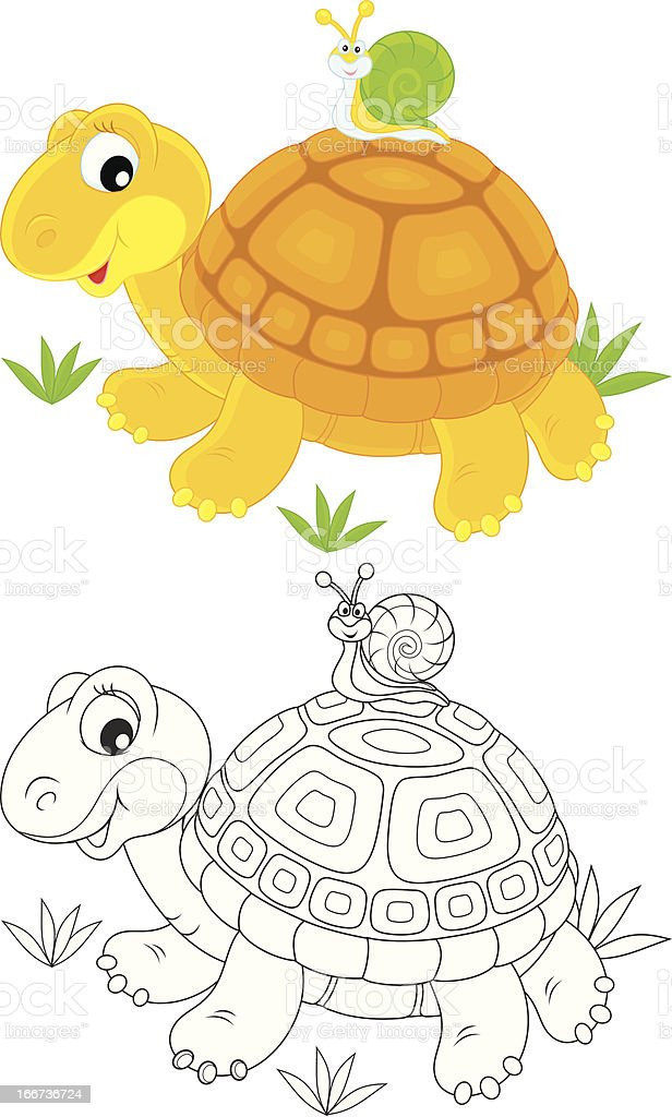 Tortoise and snail royalty-free stock vector art