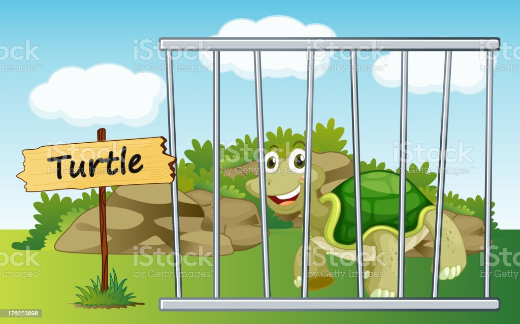 Tortoise in cage royalty-free stock vector art