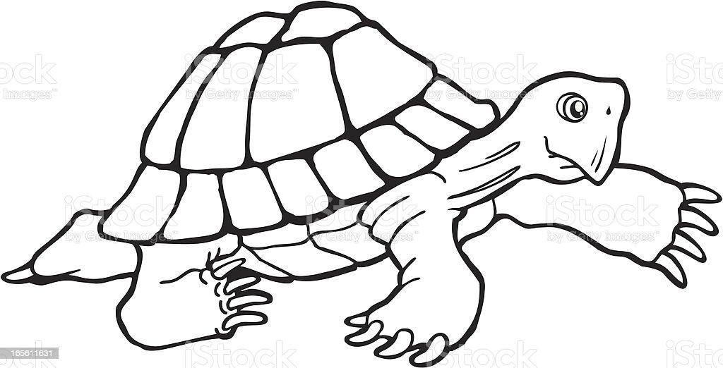 Tortoise Walking royalty-free stock vector art