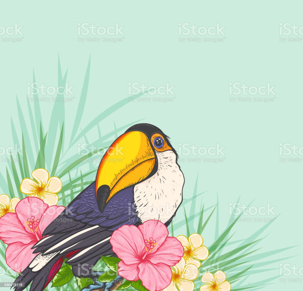 Summer tropical background with toucan and flowers. Green floral...