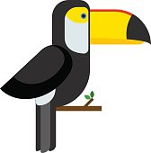 Toucan ramphastos toco sitting on tree branch and tropical wild