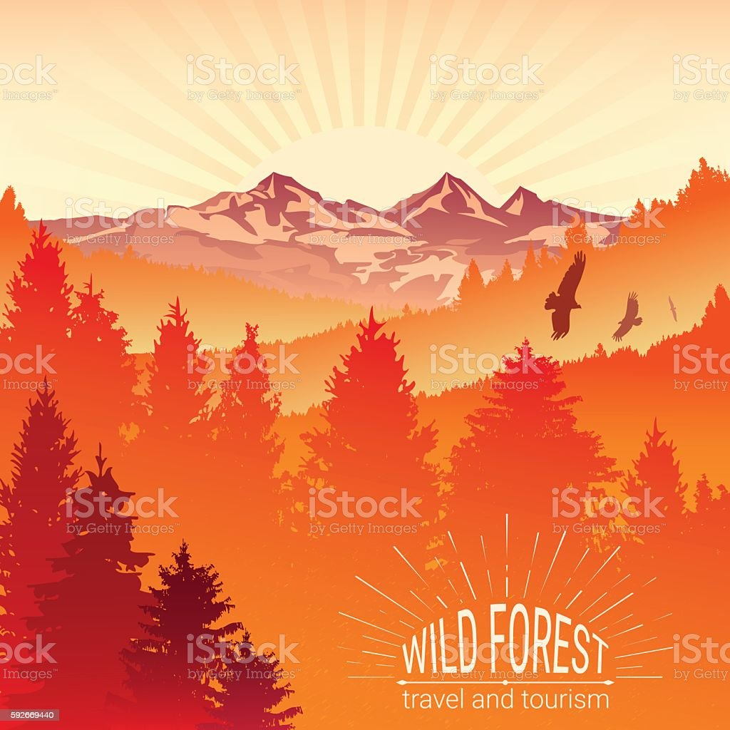 Tourism and travel. Camping. Abstract background. Wild forest. vector art illustration