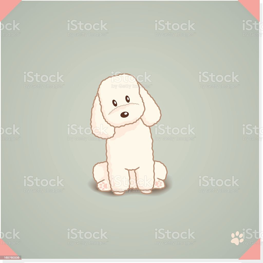 Toy Poodle Sitting royalty-free stock vector art