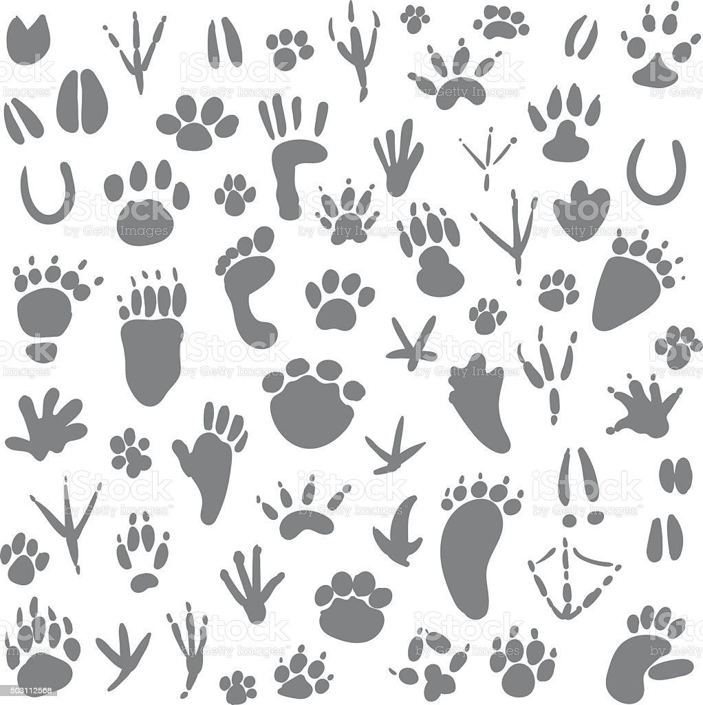 Traces of animals vector art illustration