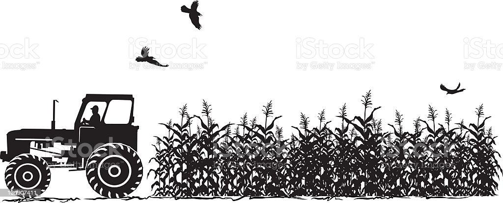 Tractor and Corn Field Agriculture Silhouette Isolated on White royalty-free stock vector art