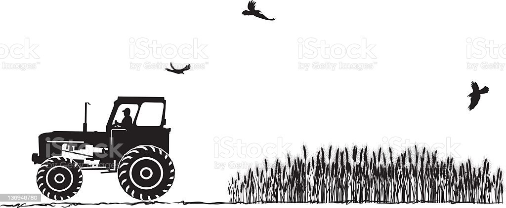 Tractor and Wheat Field royalty-free stock photo