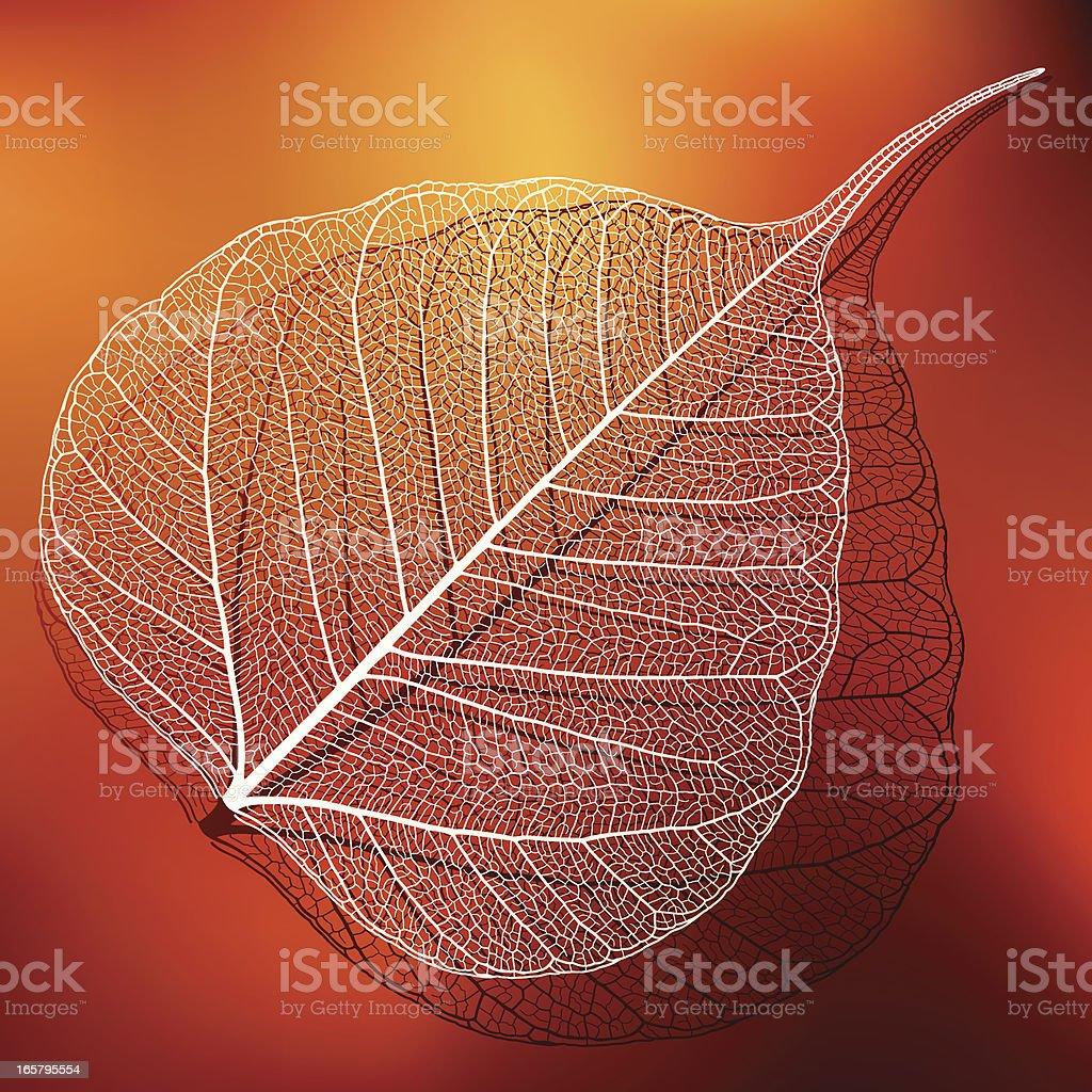 Transparent Leaf royalty-free stock vector art