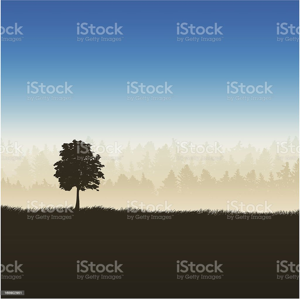 tree and forest royalty-free stock vector art