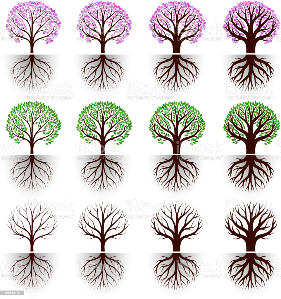 Tree blossom with flowers and leaves vector icon set vector art illustration