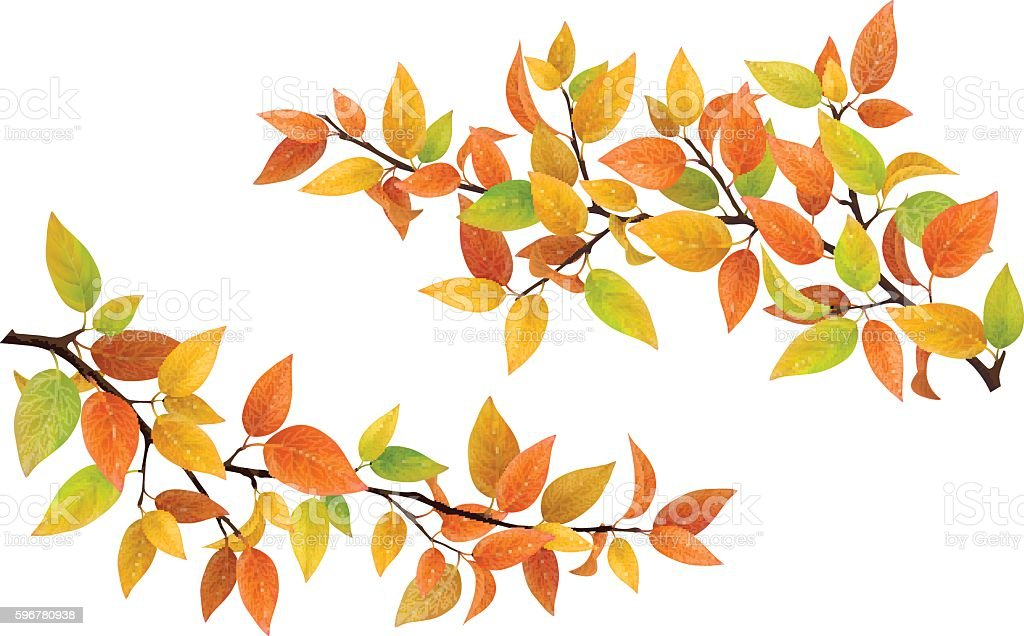 Tree branch with autumn leaves vector art illustration