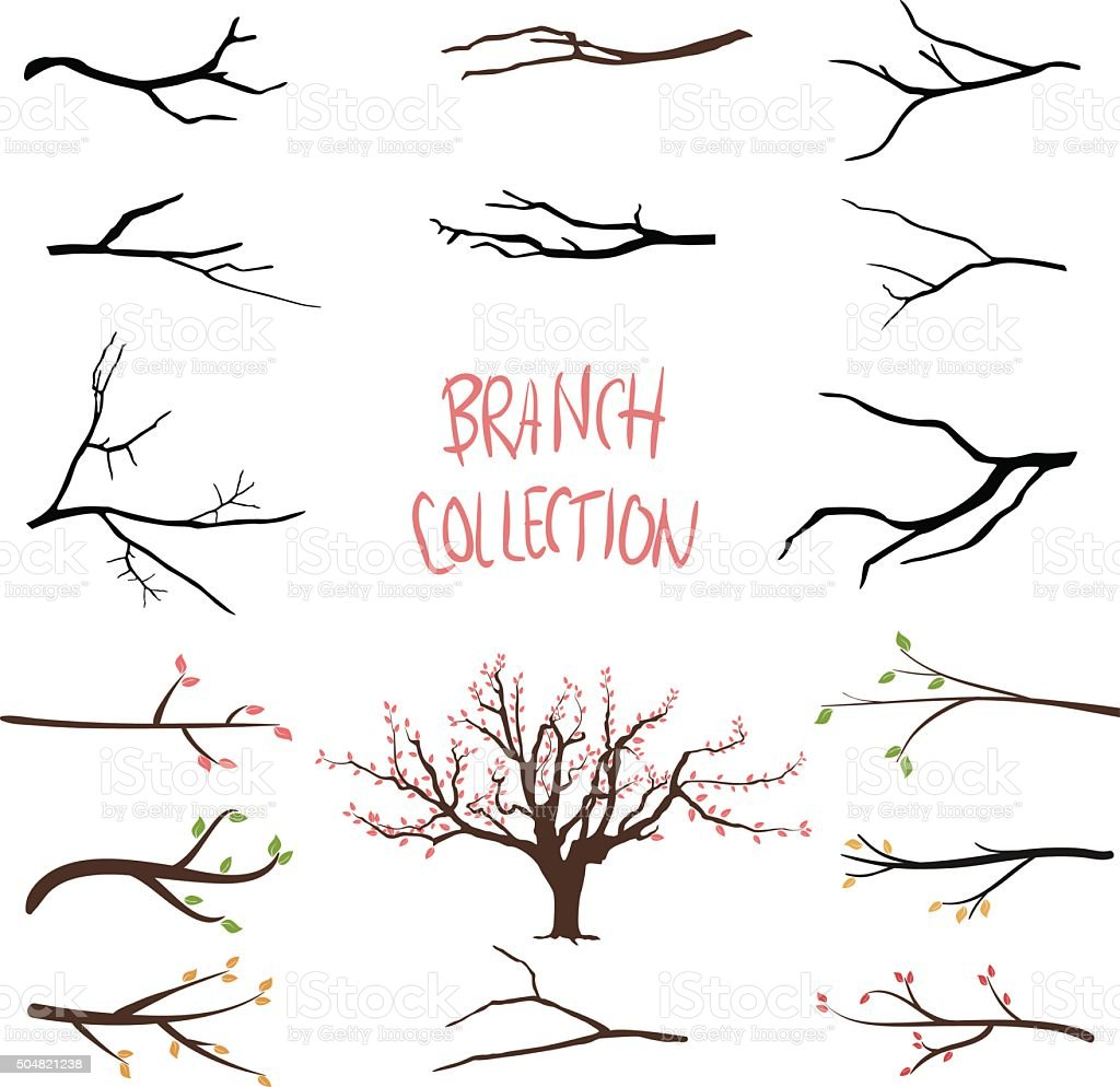 Tree branches vector art illustration