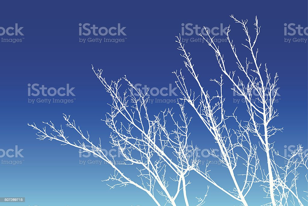 Tree Branches Winter vector art illustration