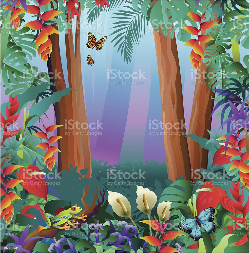 tree frog and butterflies in the rainforest vector art illustration