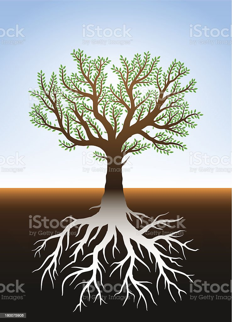 Tree in earth and it's roots royalty-free stock vector art
