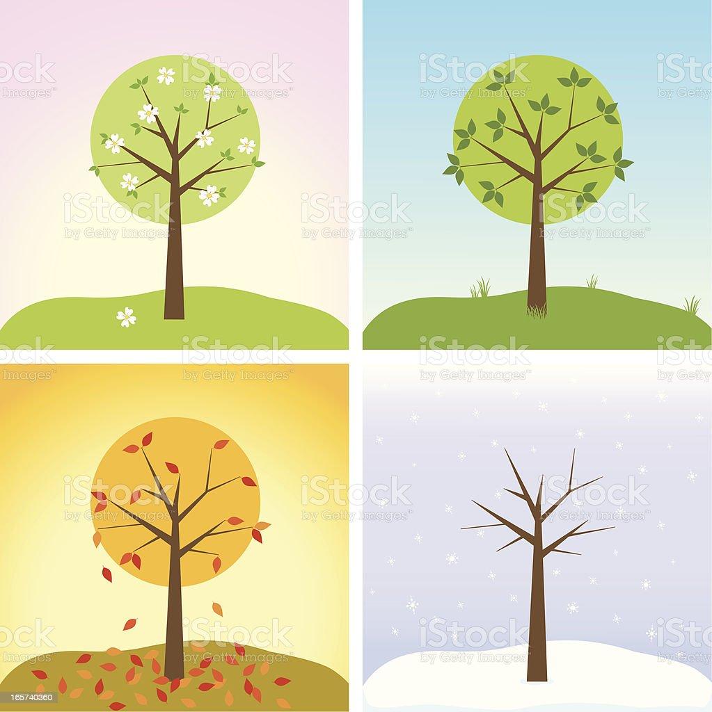 Tree in four seasons royalty-free stock vector art