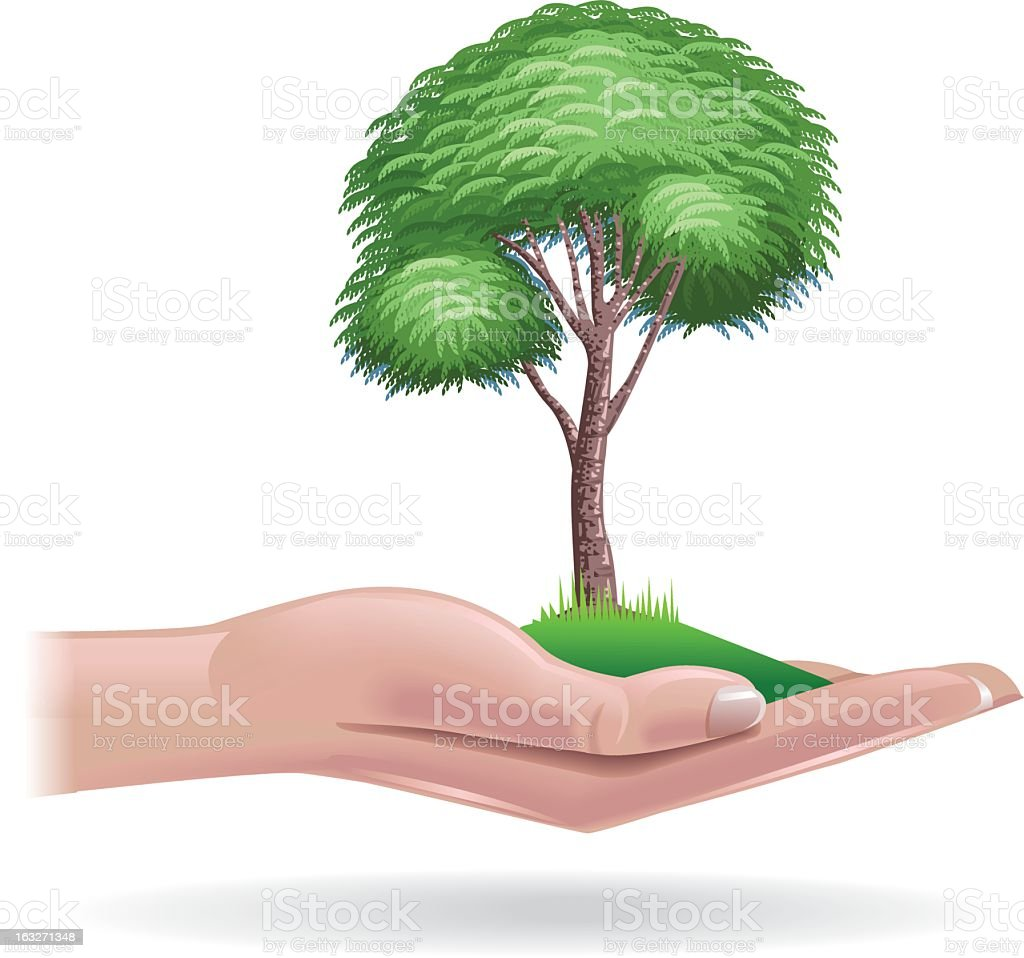 Tree in palm of hand royalty-free stock vector art