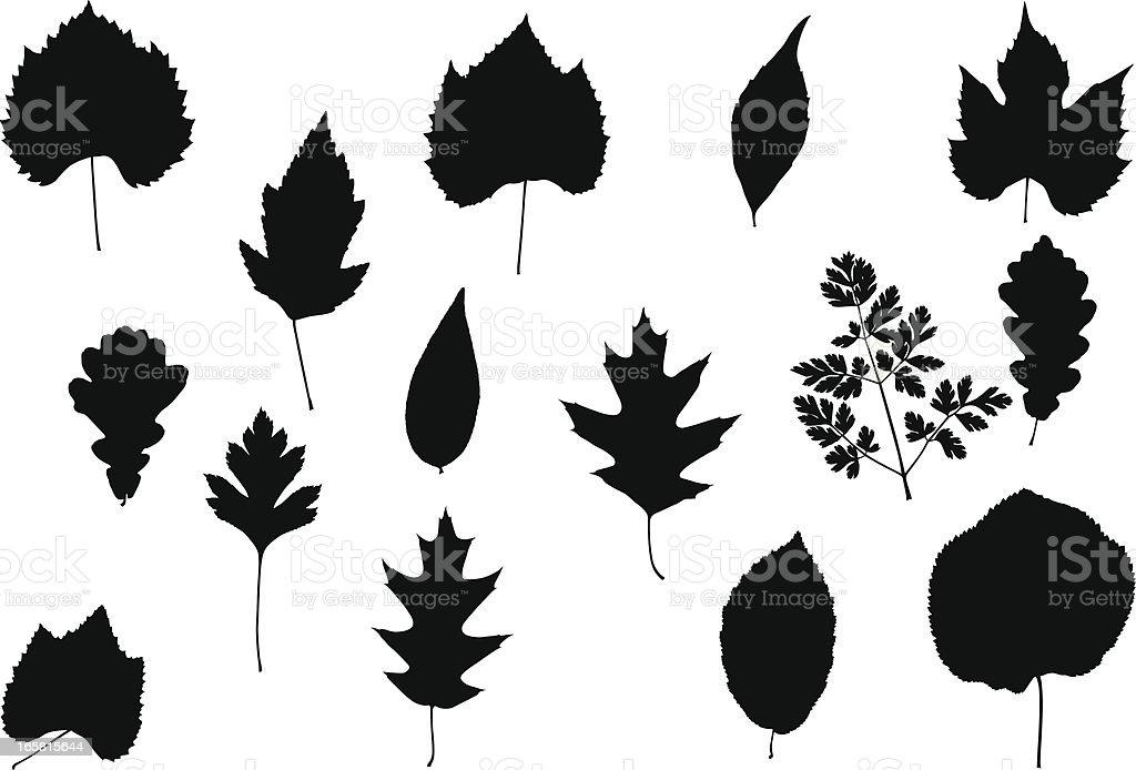 Tree leaves royalty-free stock vector art