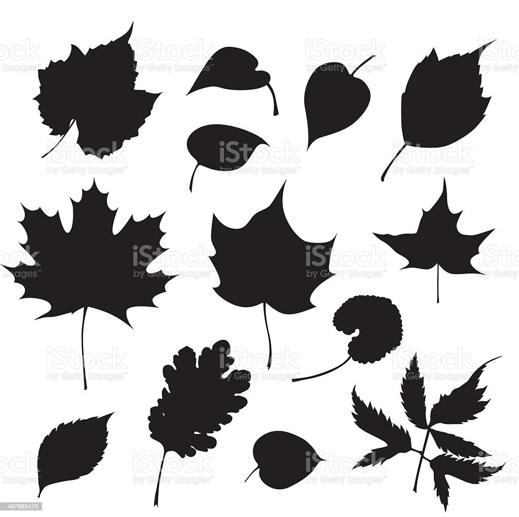 Tree Leaves vector art illustration