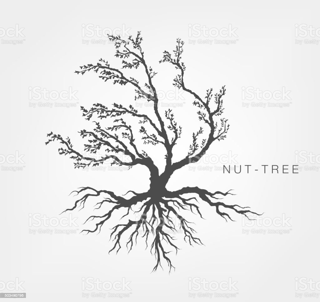 tree on a white background with leaves vector art illustration