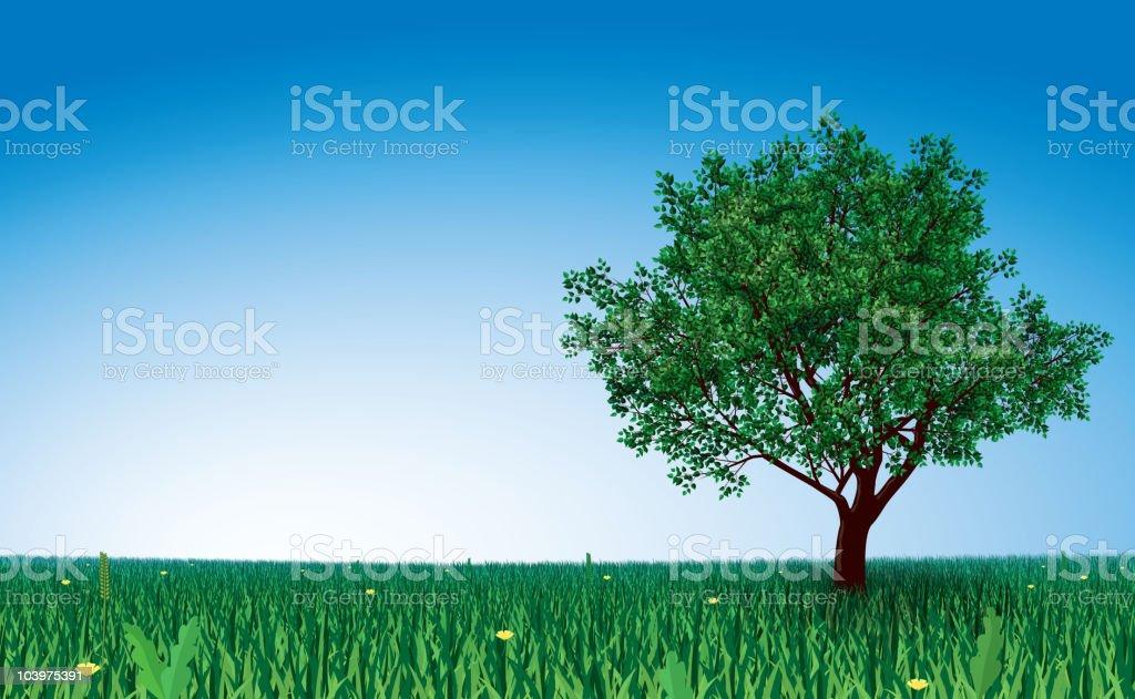 Tree on green field vector art illustration
