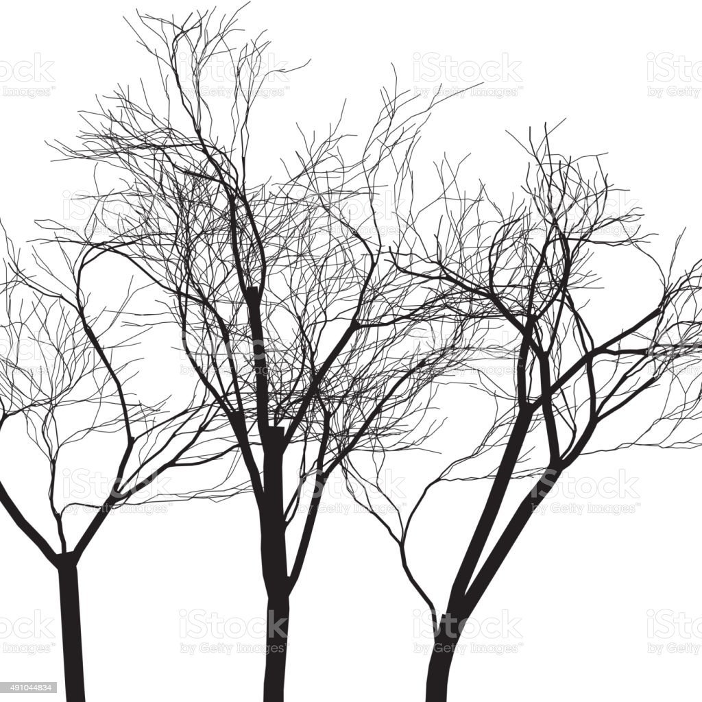 tree pattern vector art illustration
