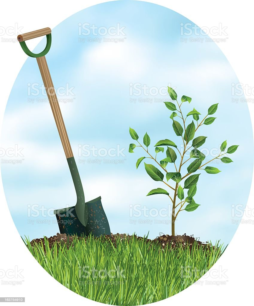 Tree Planting for Arbor Day royalty-free stock vector art