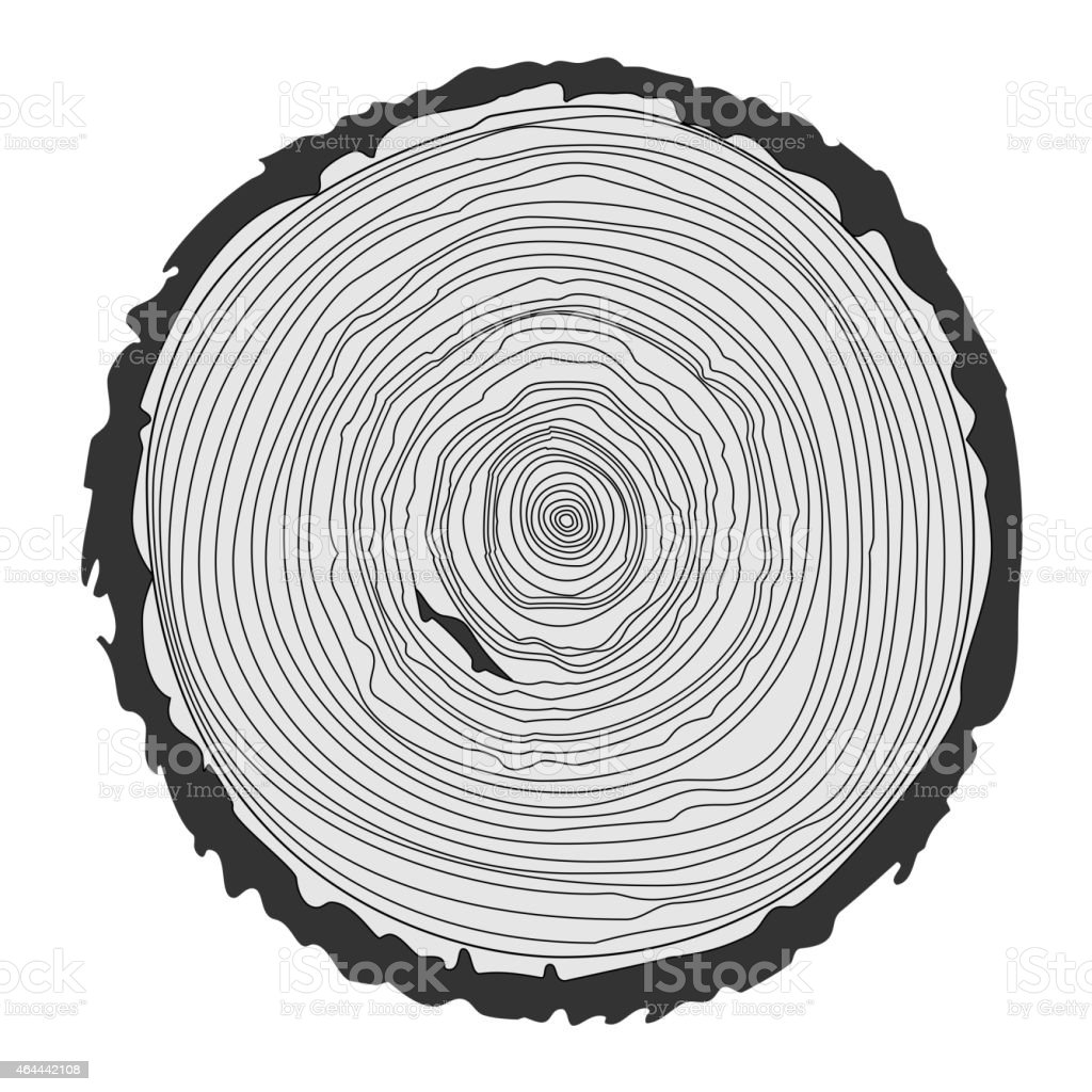 Tree rings and saw cut tree trunk. Vector illustration vector art illustration