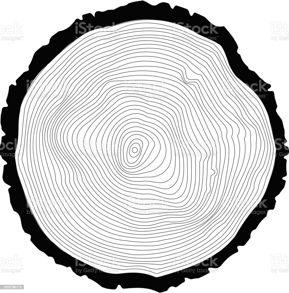 Tree rings background. Annual tree vector art illustration
