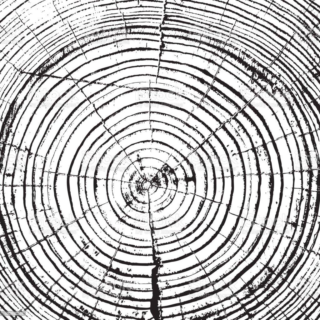 Tree rings saw cut tree trunk vector art illustration