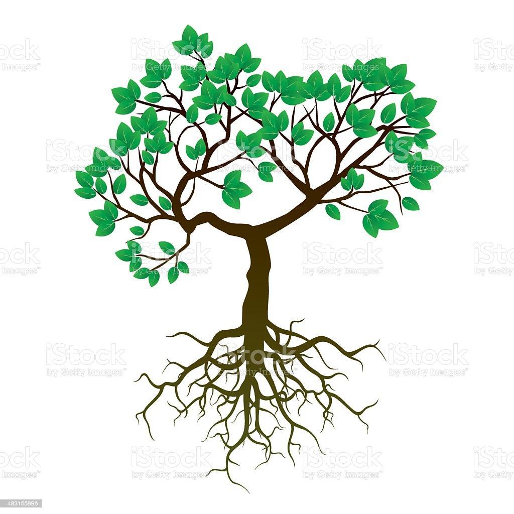 rbol de ra ces y verde leafs ilustraci n vectorial