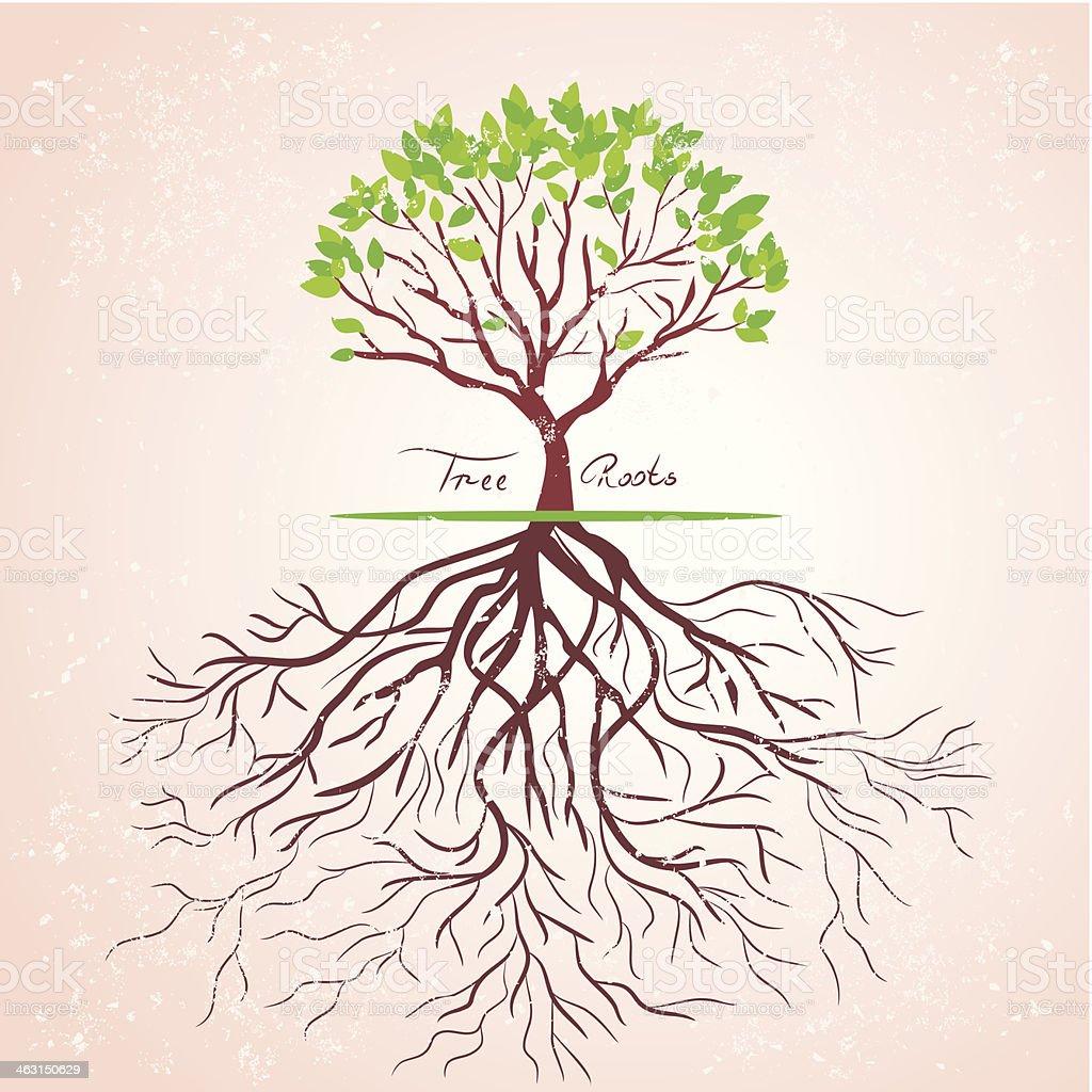 tree roots vector art illustration