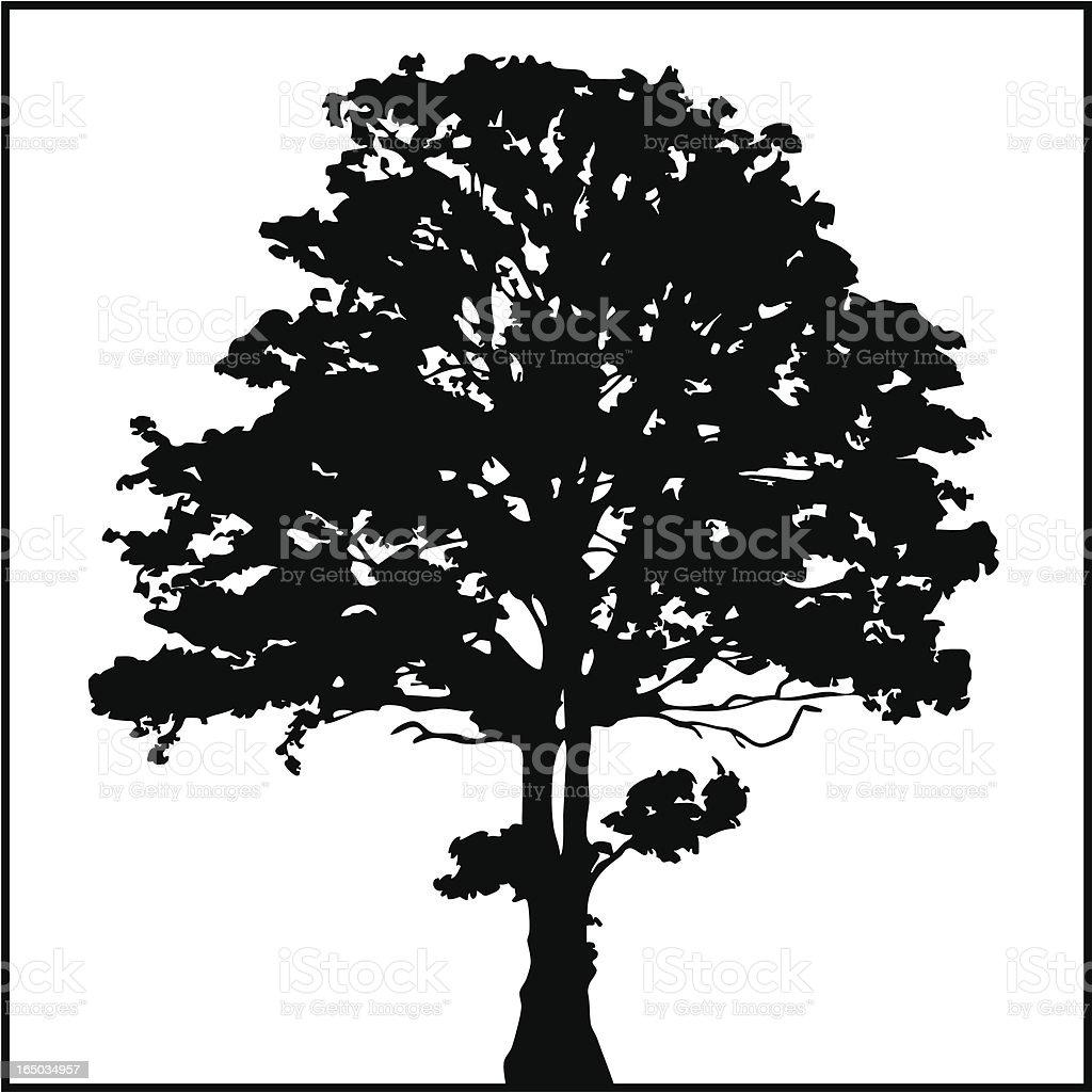 Tree Silhouette 02 vector art illustration