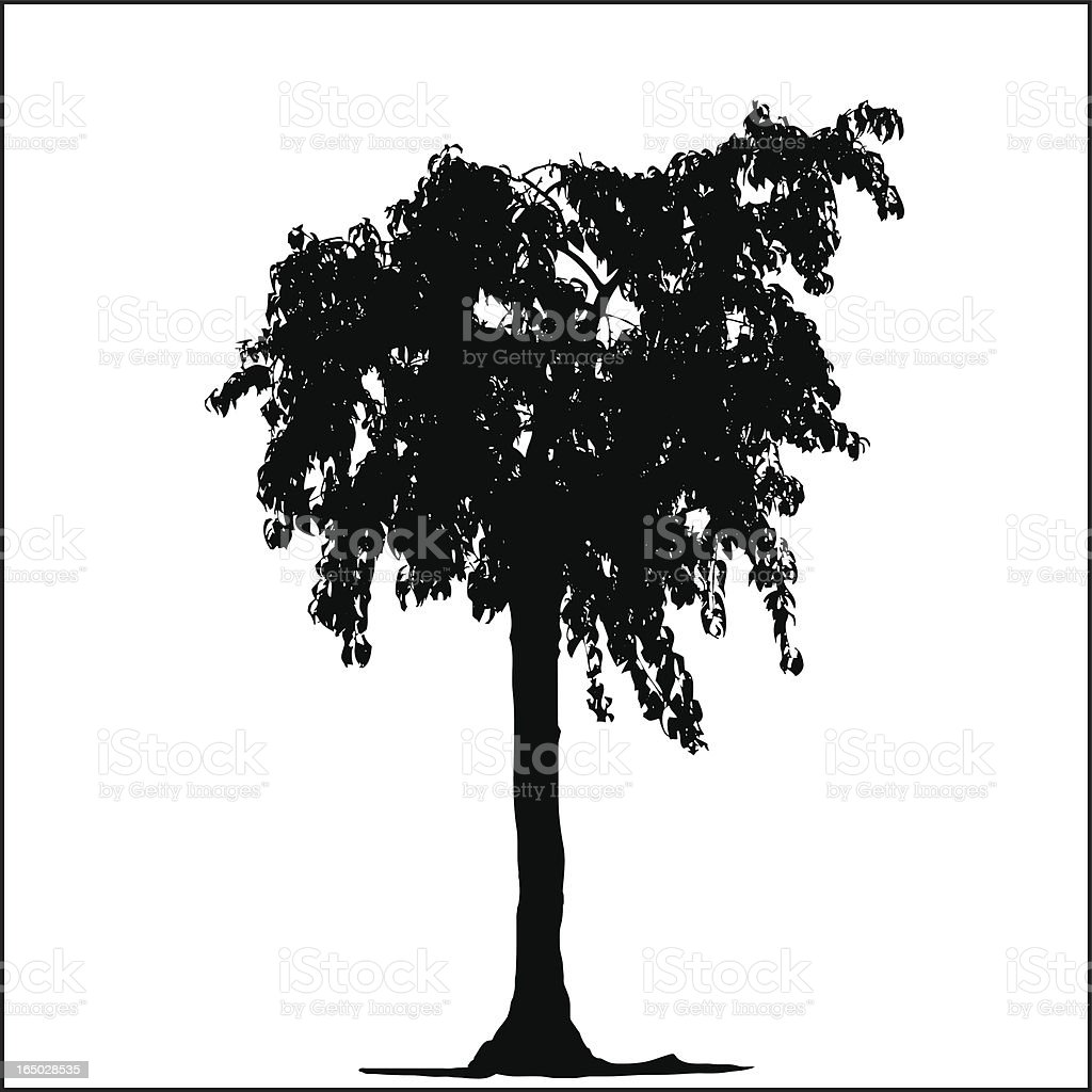 Tree Silhouette 07 royalty-free stock vector art