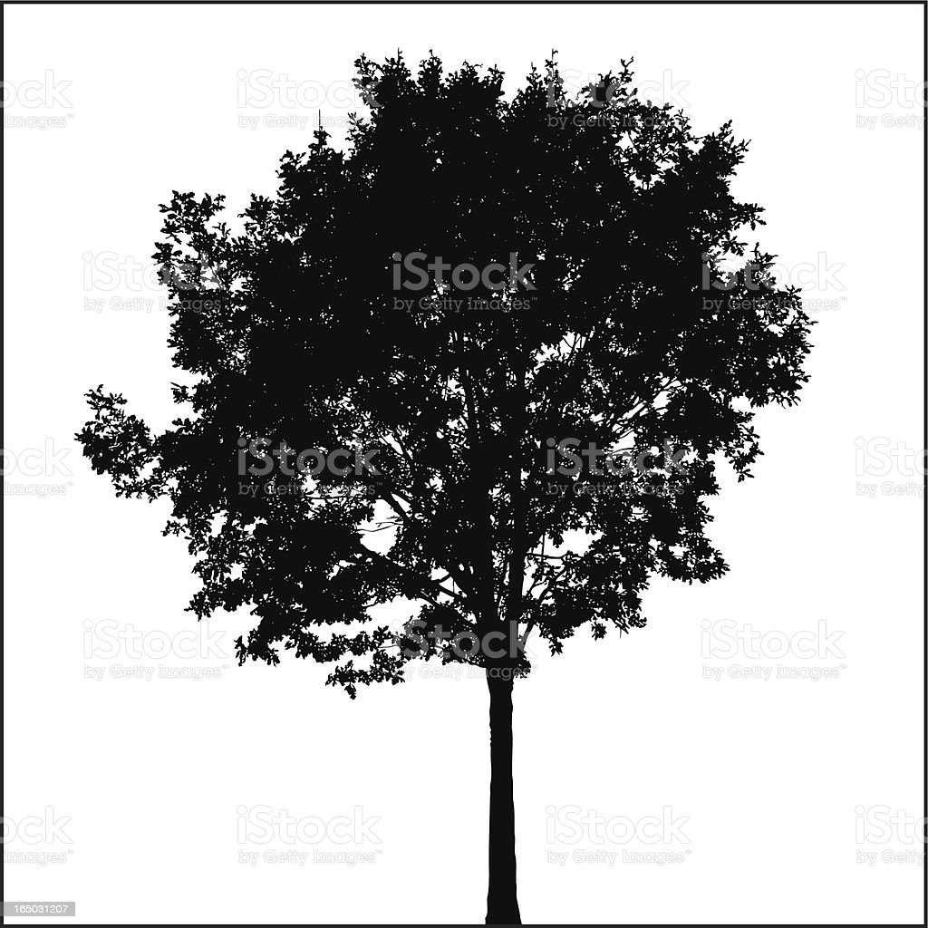 Tree Silhouette 08 royalty-free stock vector art