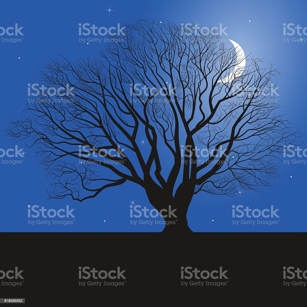 tree silhouette and night vector art illustration