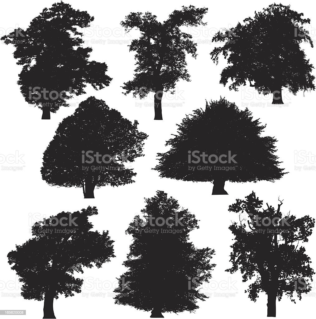 Tree silhouette collection 2 vector art illustration