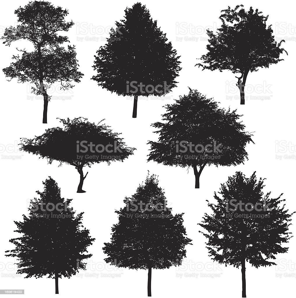 Tree silhouette collection 3 royalty-free stock vector art